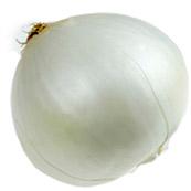cebolla-blanca