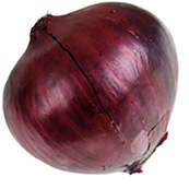 cebolla-morada